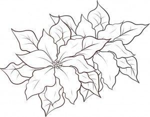 Flores Navidenas Para Imprimir Paginas Para Colorear De Navidad Dibujos De Nochebuenas Pintura En Tela Navidad