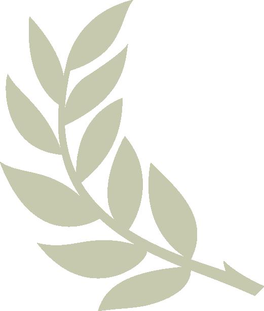 Olive Branch Graphic Etiquetas Navidenas Navideno