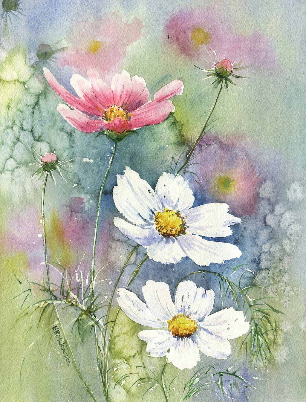 Kosmosy Maria Roszkowska Watercolour Peinture Fleurs Aquarelle