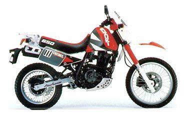 Suzuki Dr 600 Djebel