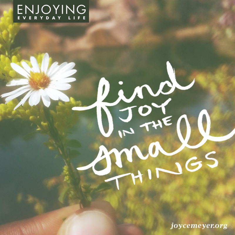 Always be joyful. What did you find joy in today?