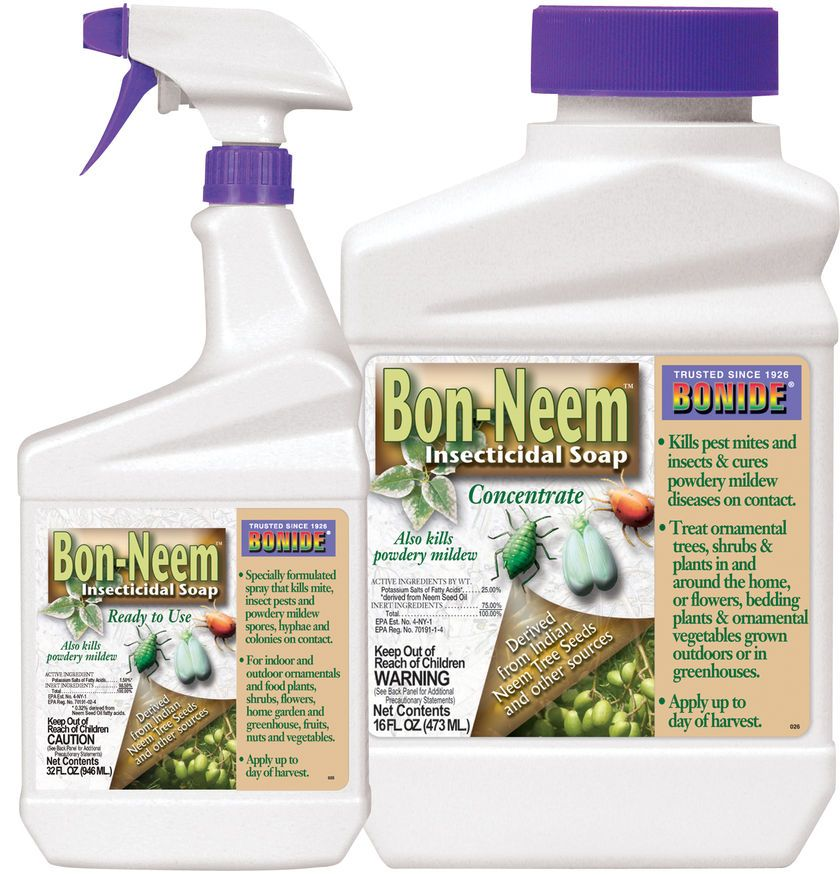Bon-Neem Insecticidal Soap -- Essential For All Indoor