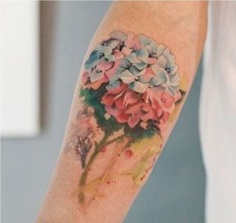 20 Hydrangea Tattoos Hydrangea Tattoo Tattoo Styles Tattoos