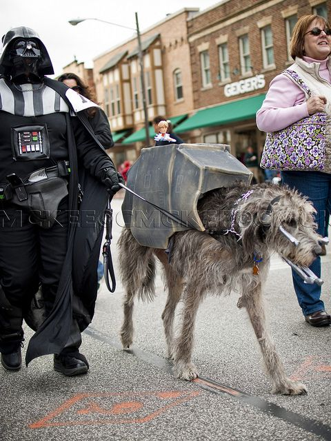 Star Wars Imperial Walker Spooky Pooch Parade Dog And Puppy