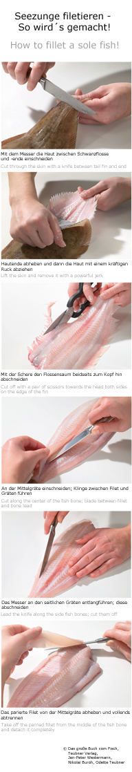 #Seezunge #filetieren - Step by Step // How to filet a sole #fish! // Full Article on http://www.gf-luxury.com/seezunge-filetieren.html
