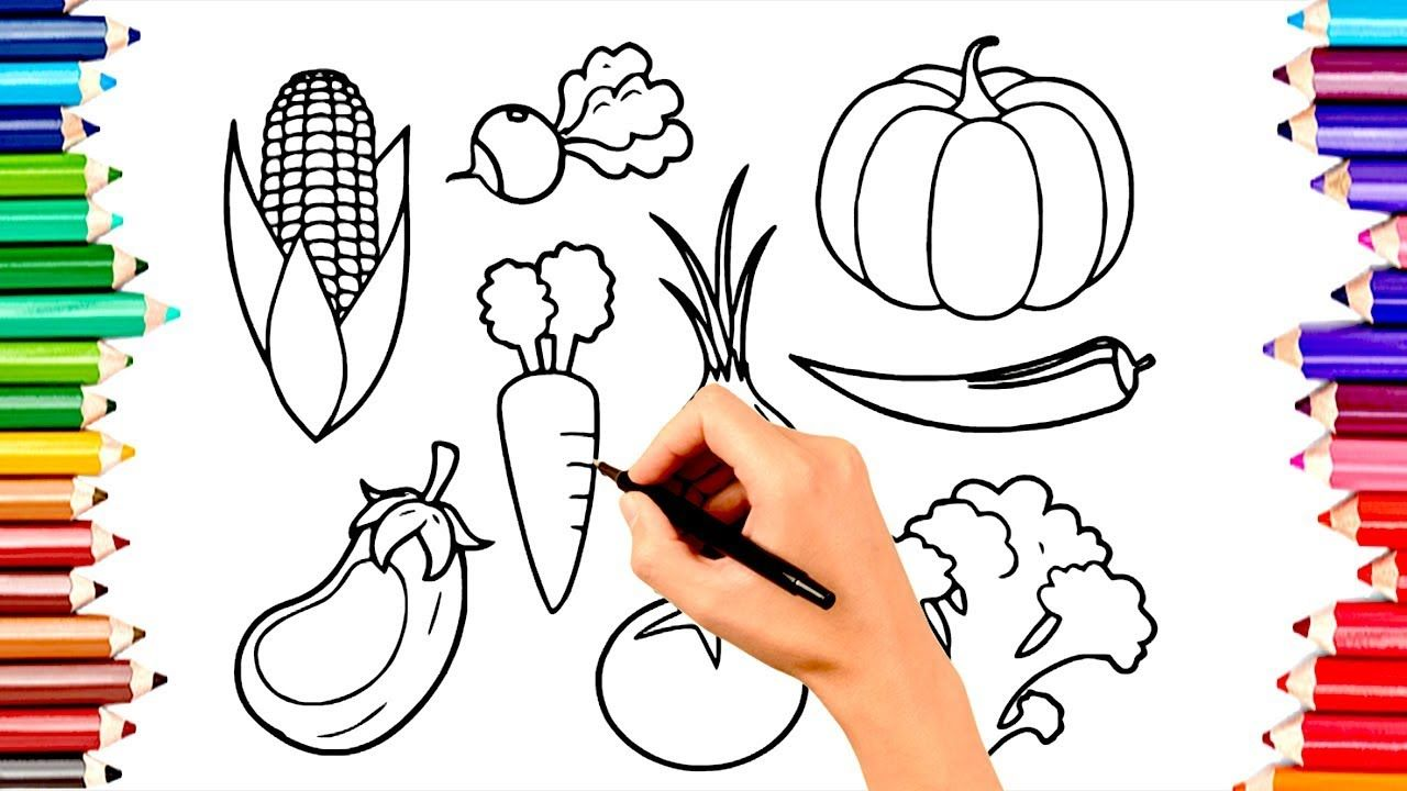 Teaching Children To Draw Vegetables Coloring Book Pages