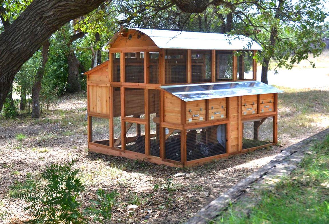 Best Easy DIY Chicken Coop Plans You Can Build   Walk in ...