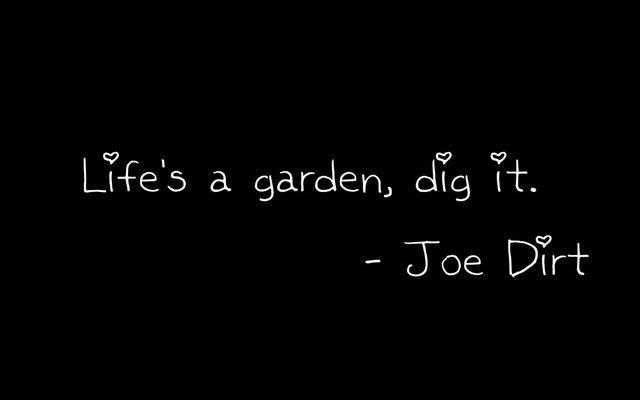 live is a garden..