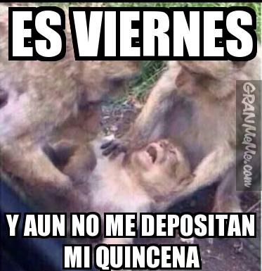 Es Viernes Y No Me Depositan Mi Quincena Png 373 385 Humor Memes Funny