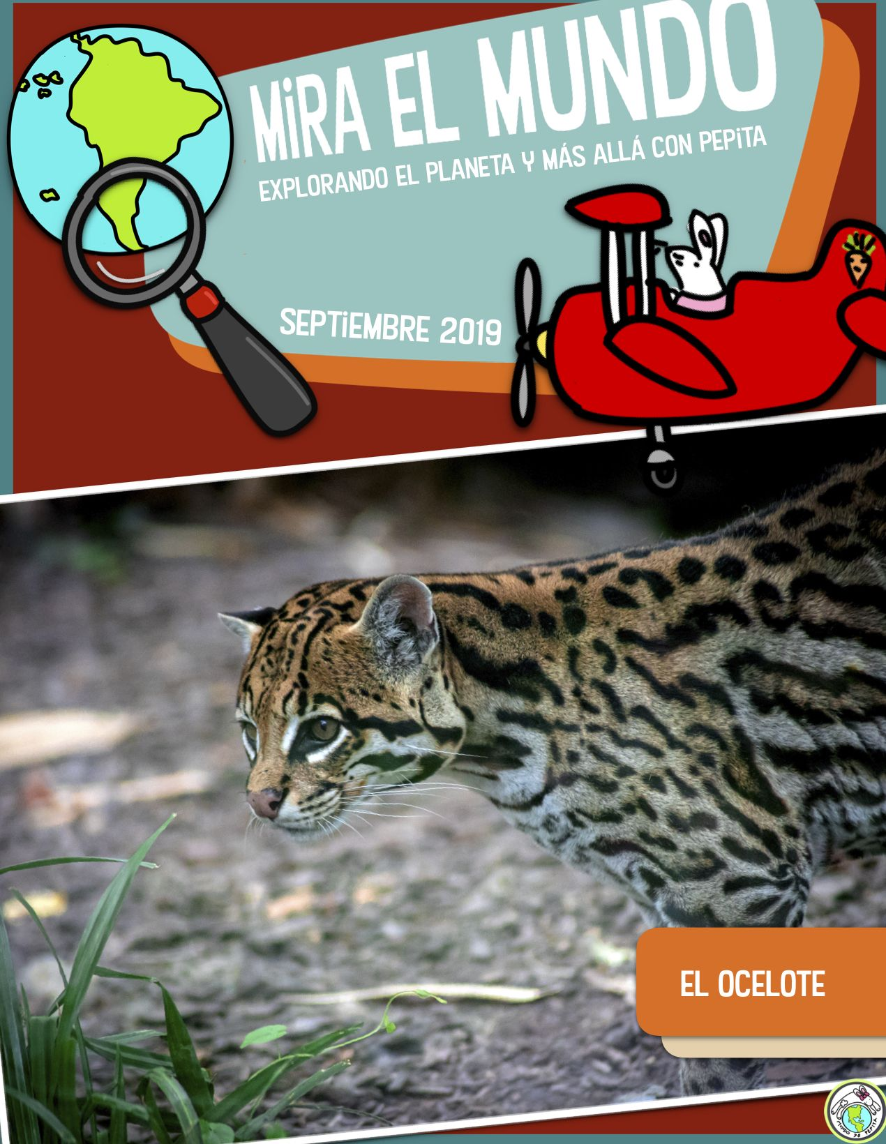 Sept El Ocelote Mira El Mundo Non Fiction Magazine In
