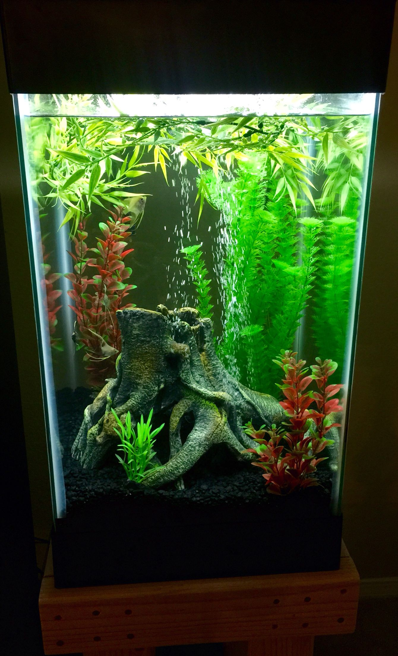 A simple 15 gallon column fish tank Aquatica Pinterest