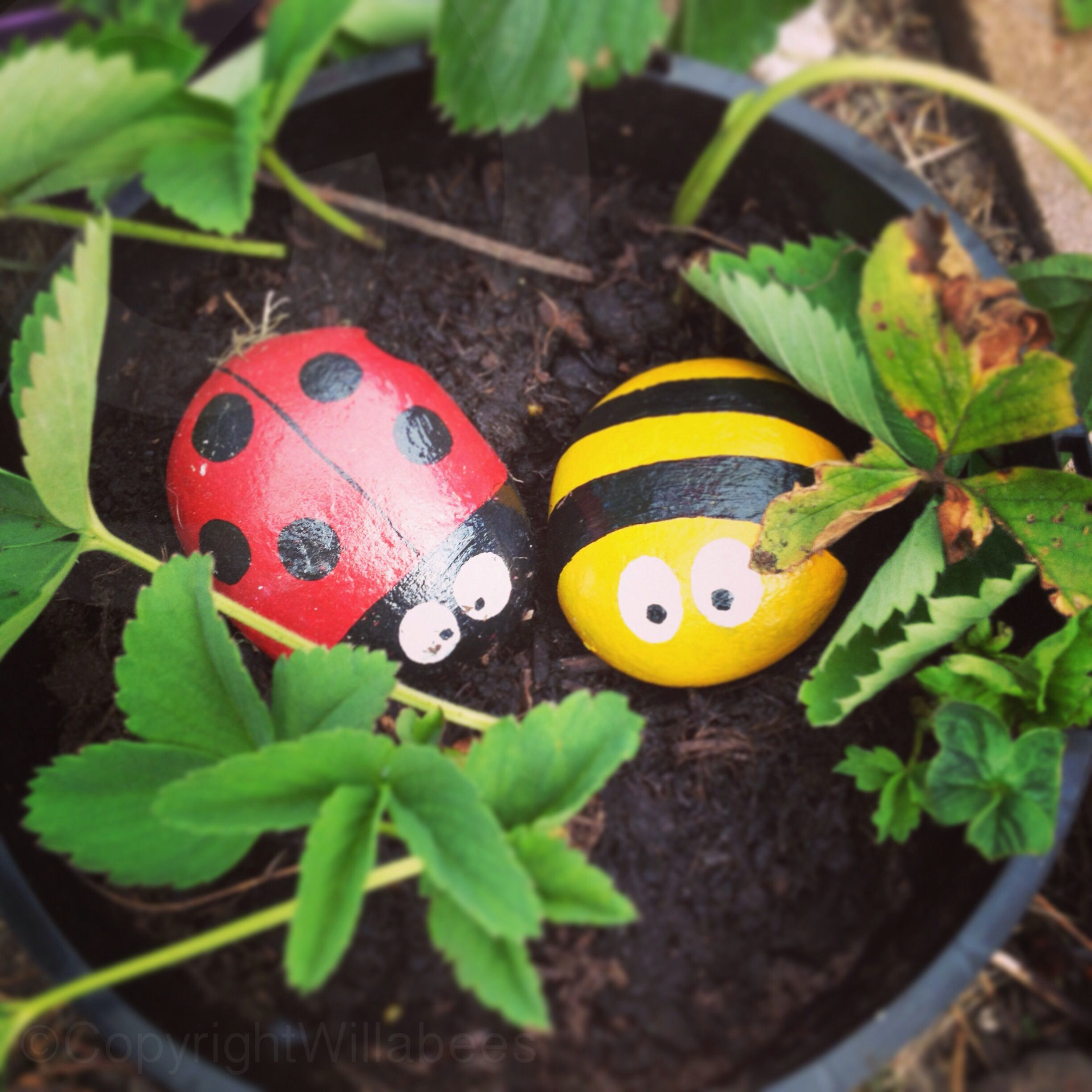 Painted Garden Stones: Painted Ladybird An Bee Rock ©Willabees