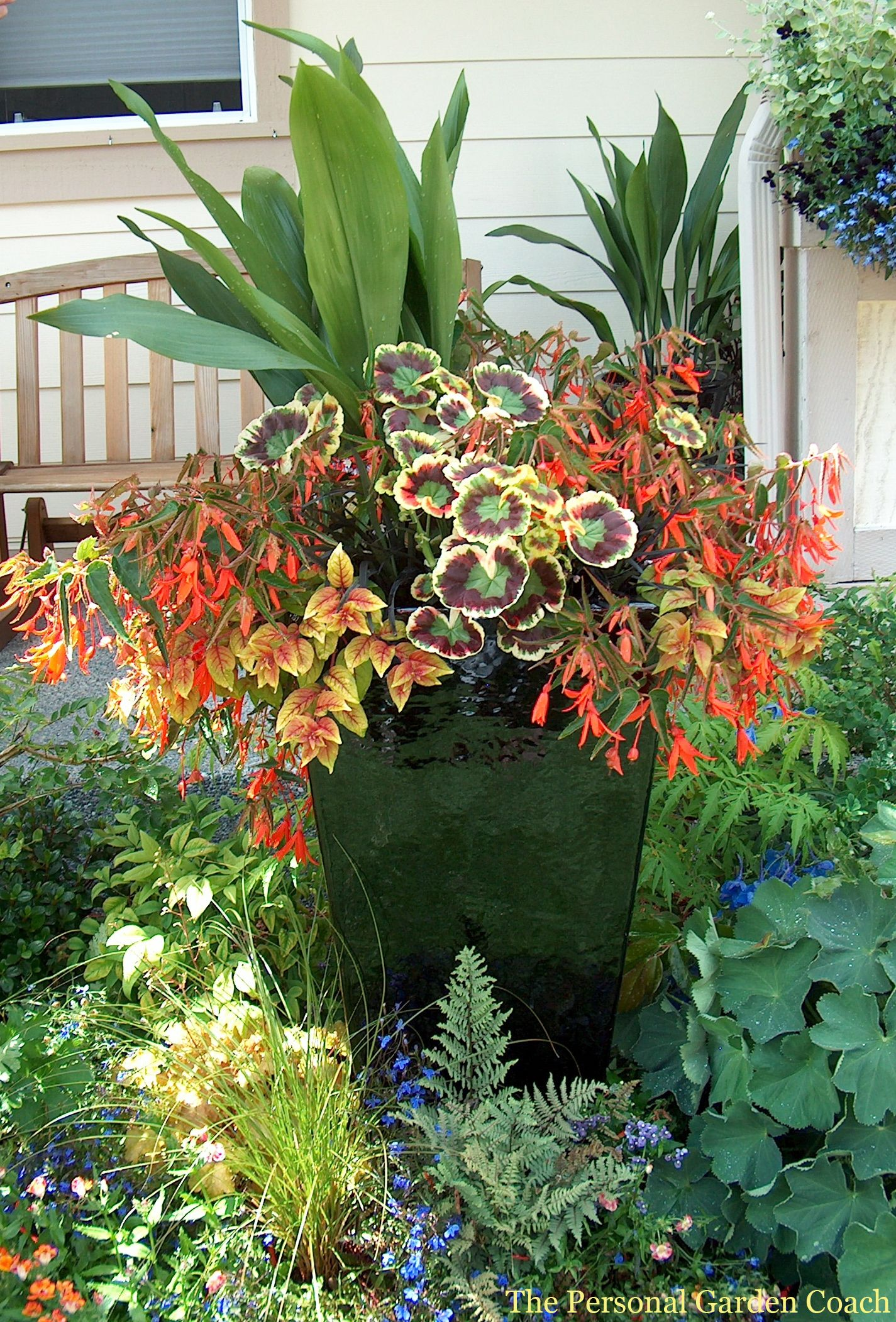 Pin By Rose Remillard On Container Plants Container Plants Fall