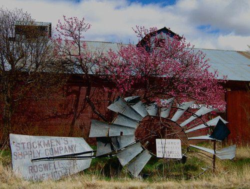 Community Windmill 1937 : Claunch NM | wilkie