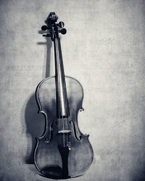Still Life Violin Fine Art Photography Musical Instrument ...