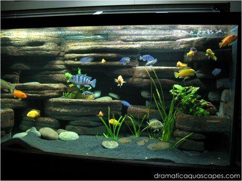 Diy Aquarium Background Rock Ledges Aquarium Backgrounds Cichlid Aquarium Aquarium