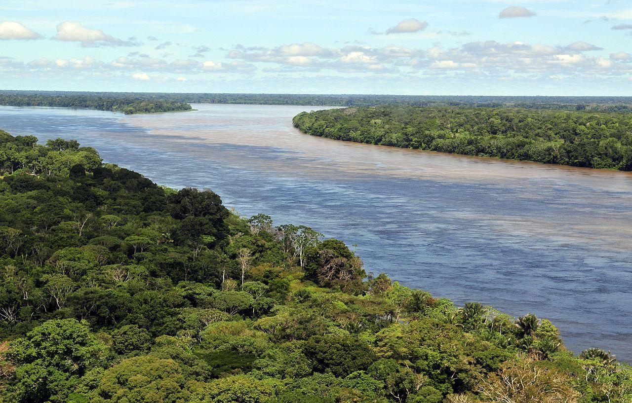 Em Conta discute economia verde na Semana da Amazônia