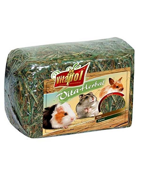 Vitapol Hay For Rodents Small Pets Food 300gm Small Pets Food Animals Pets