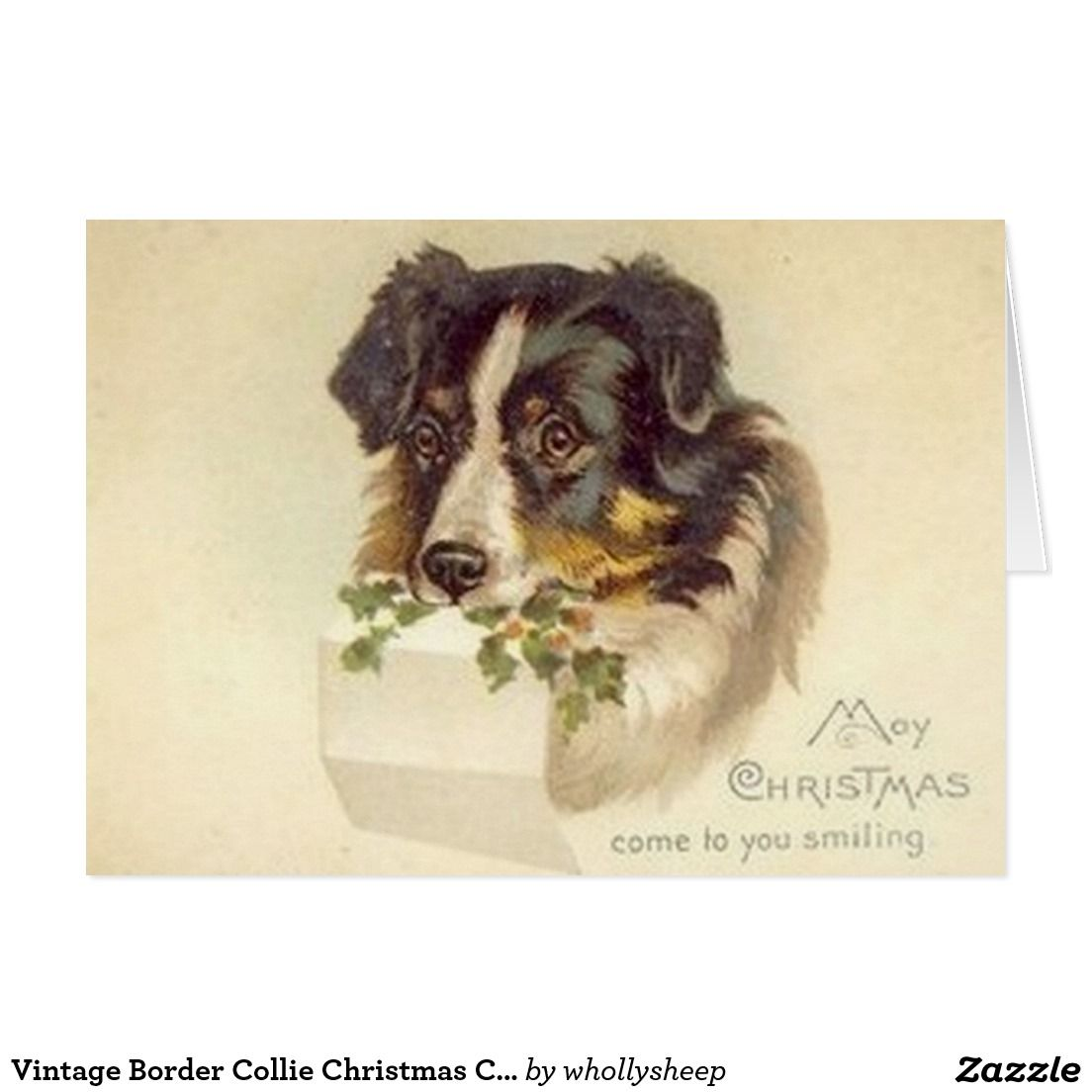 Vintage Border Collie Christmas Card | Pinterest | Collie, Vintage ...