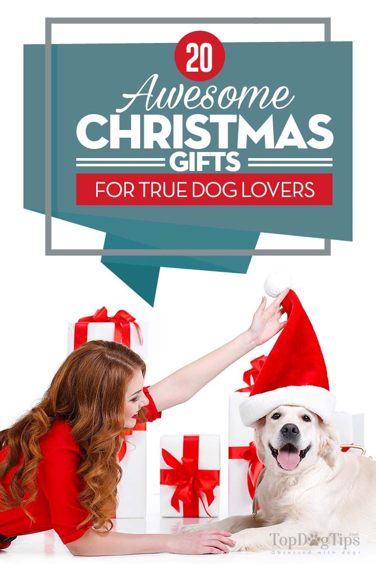 20 Awesome Christmas Gifts for Dog Lovers | Top Dog Tips | Pinterest ...