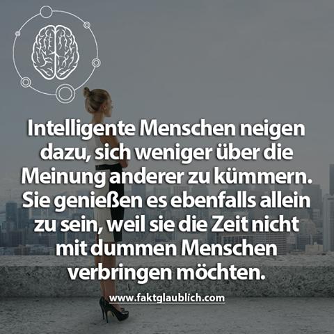 Intelligente Menschen.