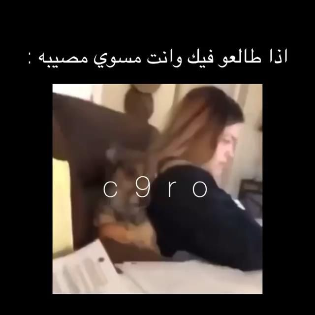 ههههههههههههههههههههه Video In 2021 Movie Quotes Funny Fun Quotes Funny Funny Arabic Quotes