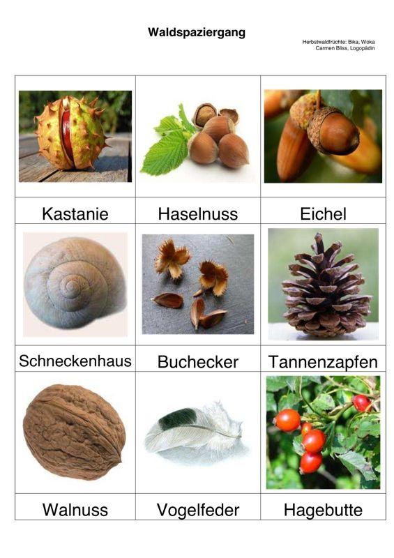 Bildkarten: Herbstliches - Aphasie | Képek-Évszakok, időjárás ...