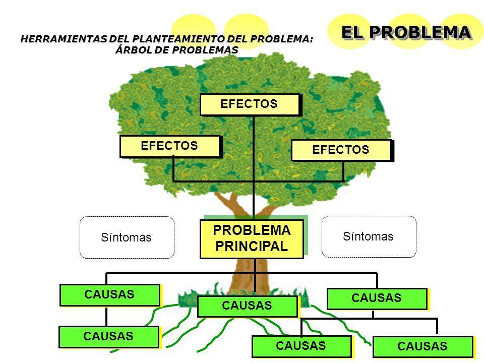 8 Ideas De Diagrama De Arbol Arbol De Problemas Arbol De Objetivos Plantillas De árboles