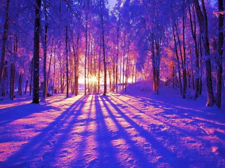 Beautiful Winter Pictures Google Search