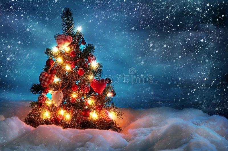 Christmas Tree With Lights In Winter Sponsored Tree Christmas Wi Christmas Desktop Wallpaper Christmas Tree Wallpaper Christmas Tree Wallpaper Iphone