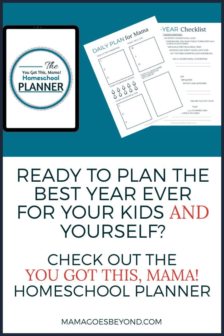 You Got This, Mama! Homeschool Planner in 2020