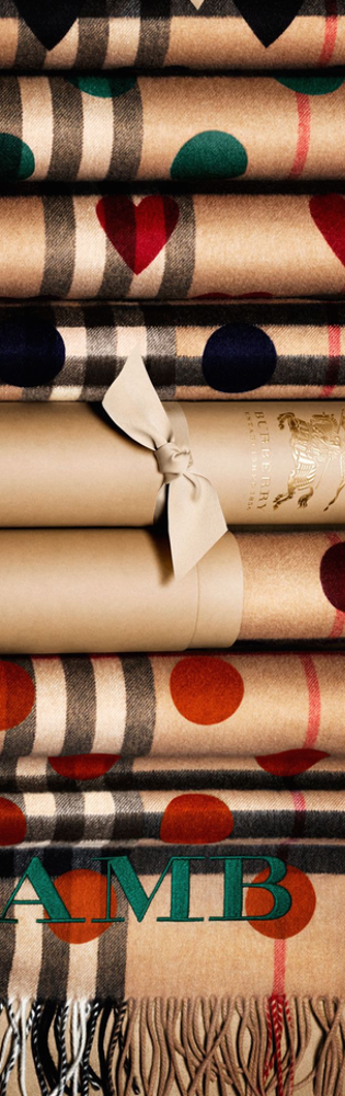 Burberry Gifts for Her Cashmere Scarves