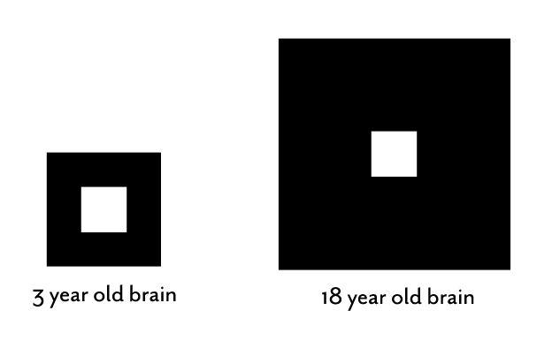 Baby Brain Neuroplasticity | Karen Pape MD