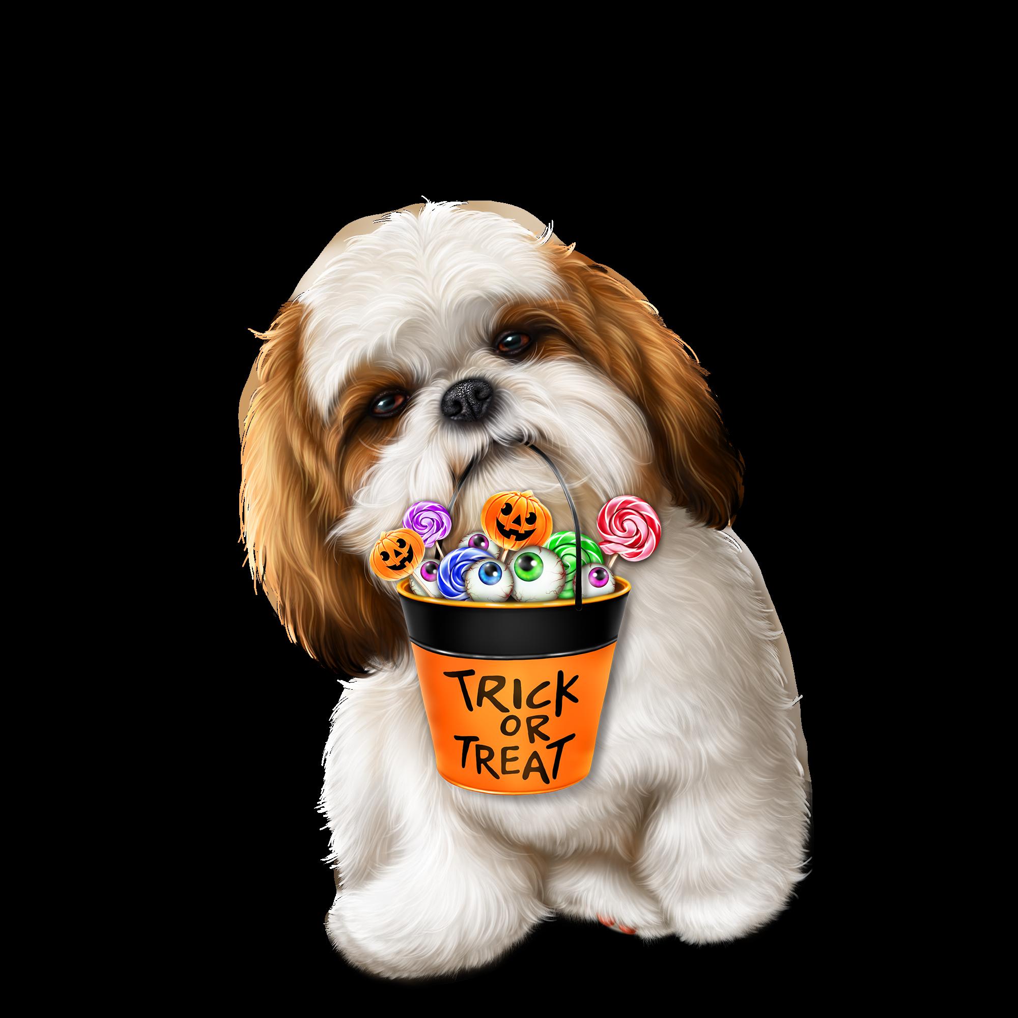 Pin By Melissa Cichon On Dog Puppy Art Teddy Bear Dog Pet Treats