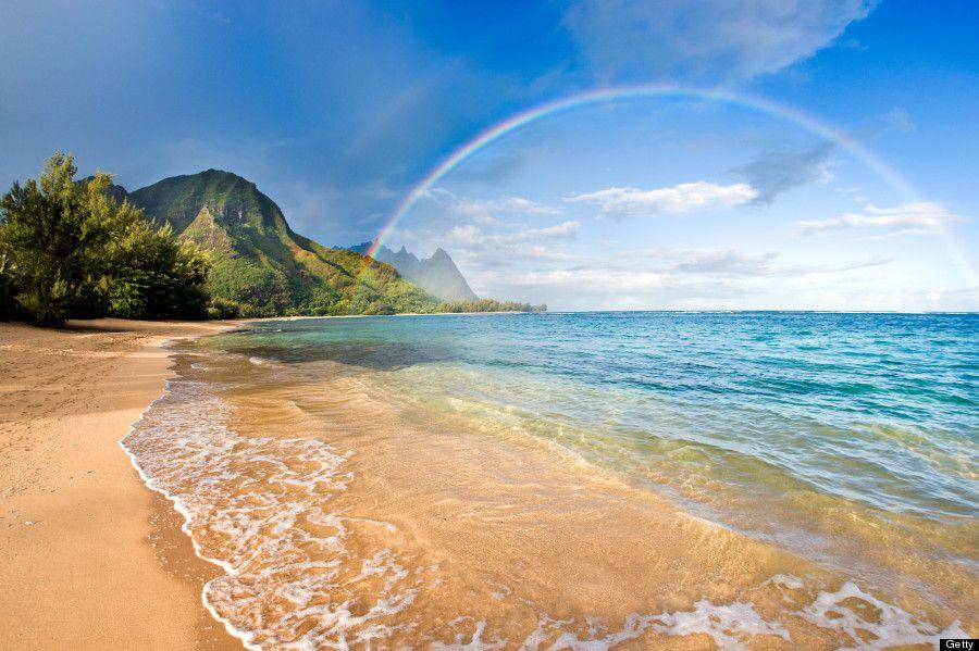 hawaii - Google 検索