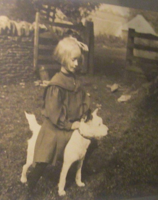 Antique Framed Photograph Little Victorian Girl Riding Terrier Dog on Farm