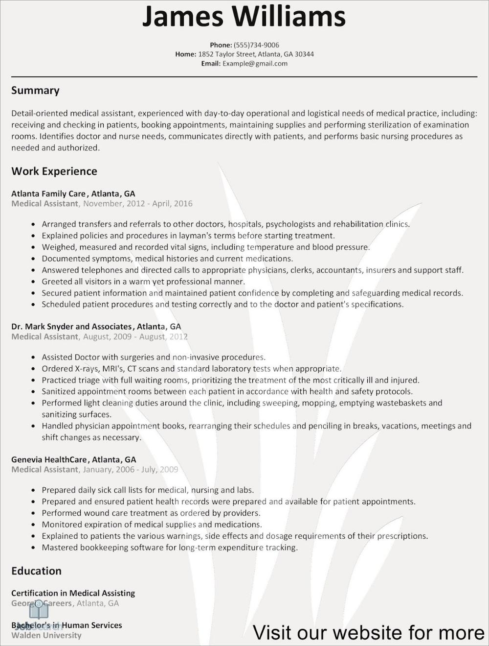 free downloadable resume template microsoft word design