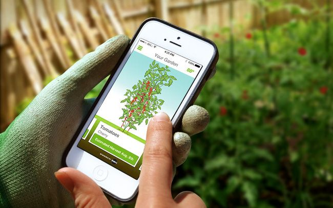 6d5dce383389e679bbe0933132c24cd3 - Best Free Gardening Apps For Android