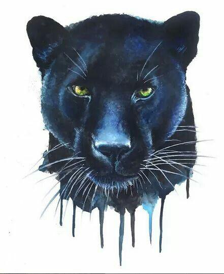 5d357a1b6 Body Art Tattoos · Cat Tattoo · Animal Tattoos · Animal Drawings · Jaguar  Puma Tiger Lion Feline Jaguar Panther, Black Panther Tattoo, Jaguar Tattoo,  Black