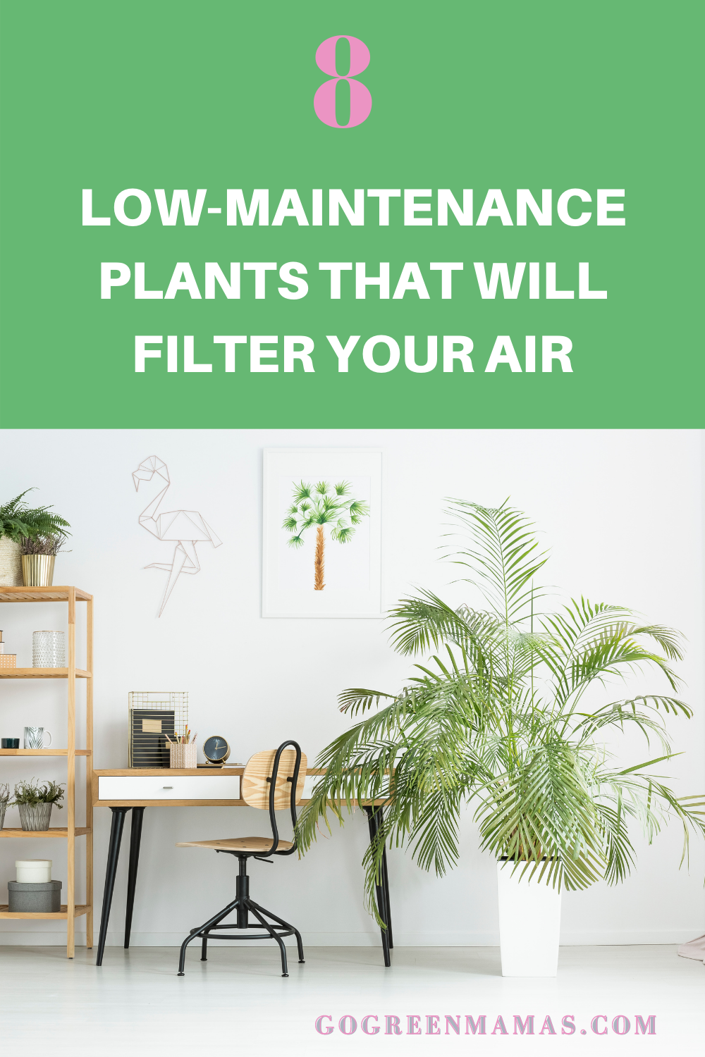 Do you love the idea of filling your home with air-filtering houseplants, but the fear of killing them all is stopping you? Here are 8 low-maintenance houseplants that are great at filtering indoor air. You don't need a greenthumb to succeed at growing these plants. #gogreenmamas #lowmaintenanceplants #airfilteringplants #houseplants #toxinfreehome