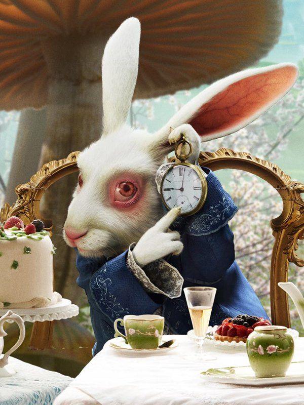 Lapin Alice Au Pays Des Merveilles : lapin, alice, merveilles, Alice, Merveilles, Personnages, Lapin,, Merveilles,
