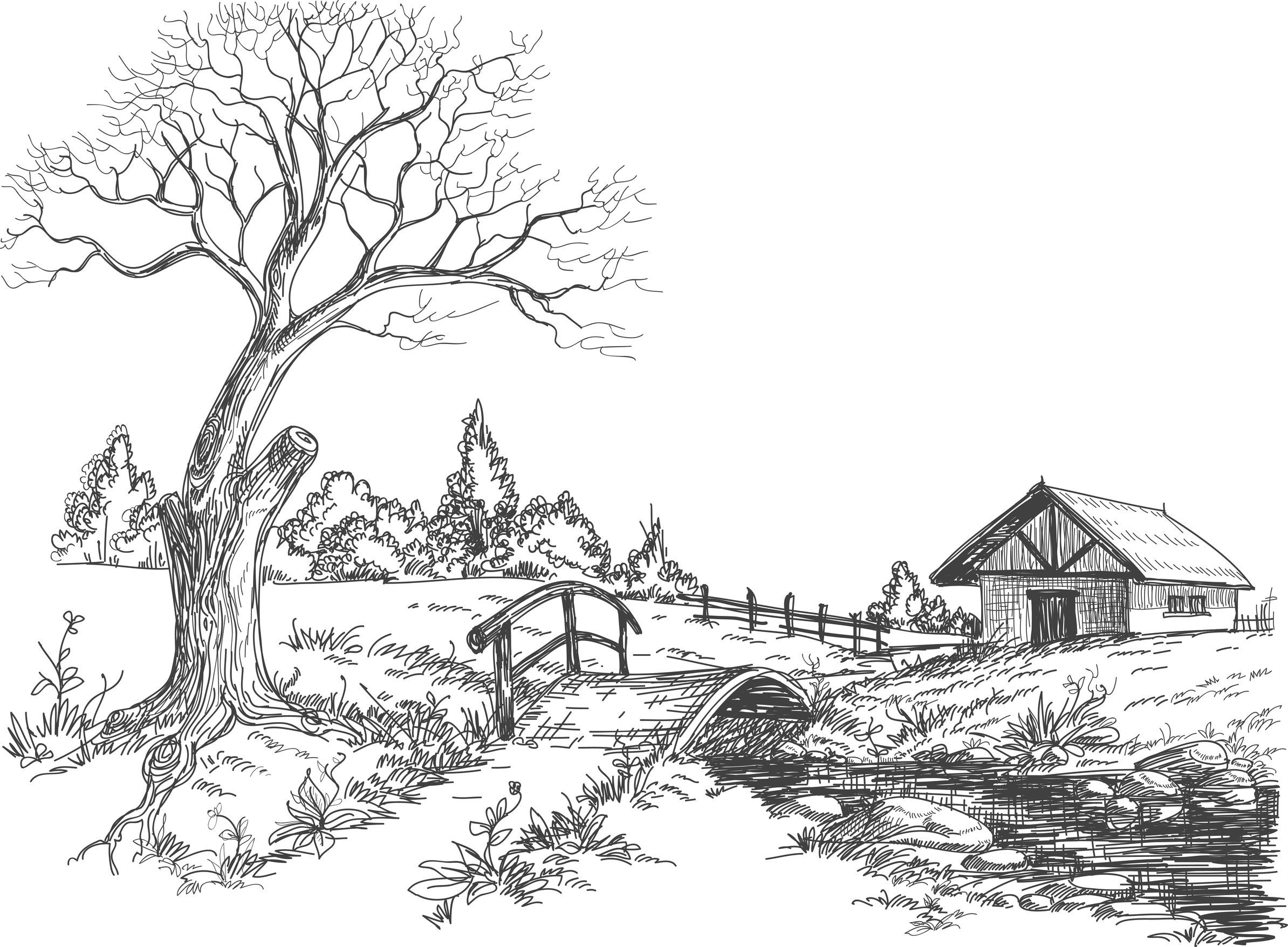 coloriage paysage campagne dautres coloriage sur httpwwwcoloriage