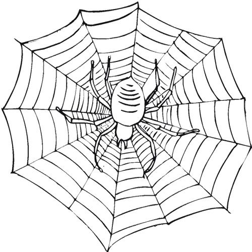 Scary Spider On A Web Coloring Page Malvorlagen Ausmalen Kunst