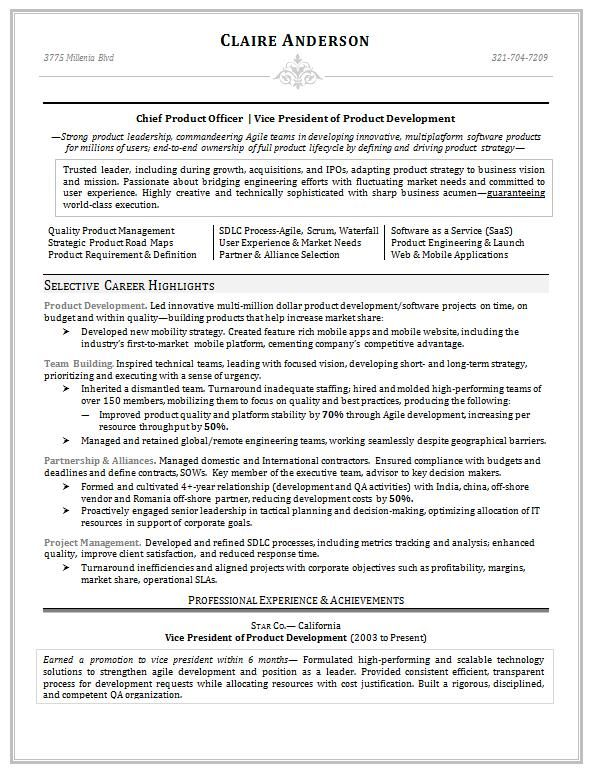copyright (c) CareerSteering Page 1 of 3 Resumes - vice president resume