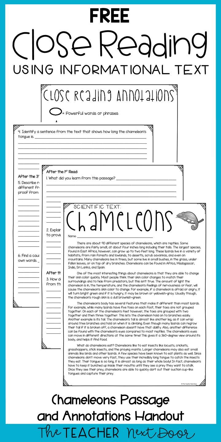 Close Reading Using Informational Text Freebie For 3rd Grade Close Reading Passages Close Reading Lessons Reading Passages