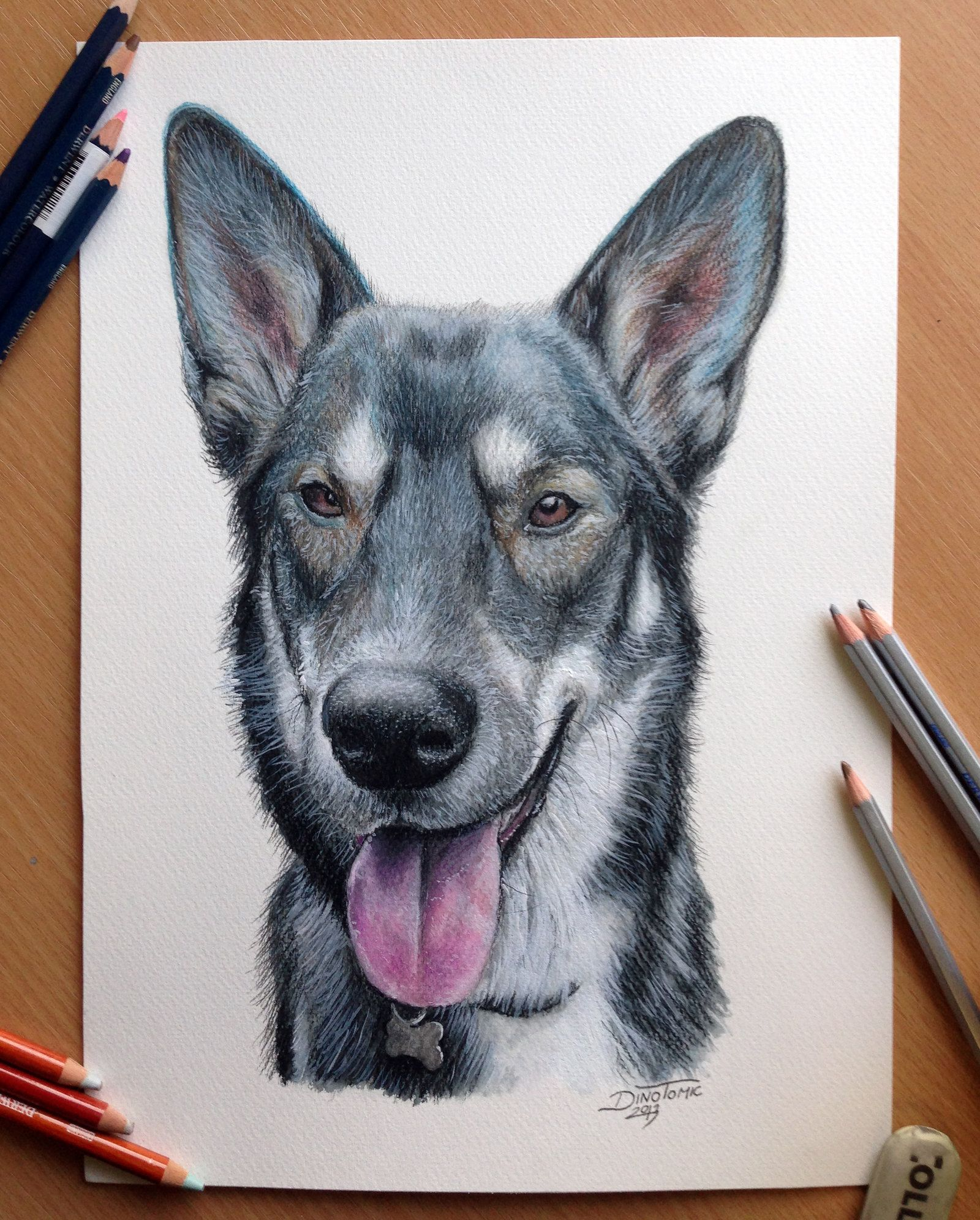 Pencil Drawing Of A Dog By Atomiccircusiantart On @deviantart