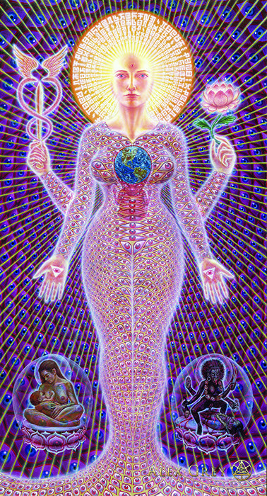 Starseed A L Che My Alex Gray Art Alex Grey Visionary Art