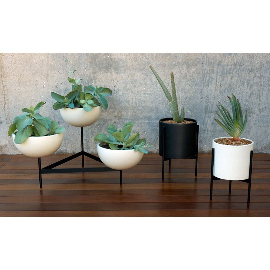 Case Study 3 Bowl Plant Stand   Small