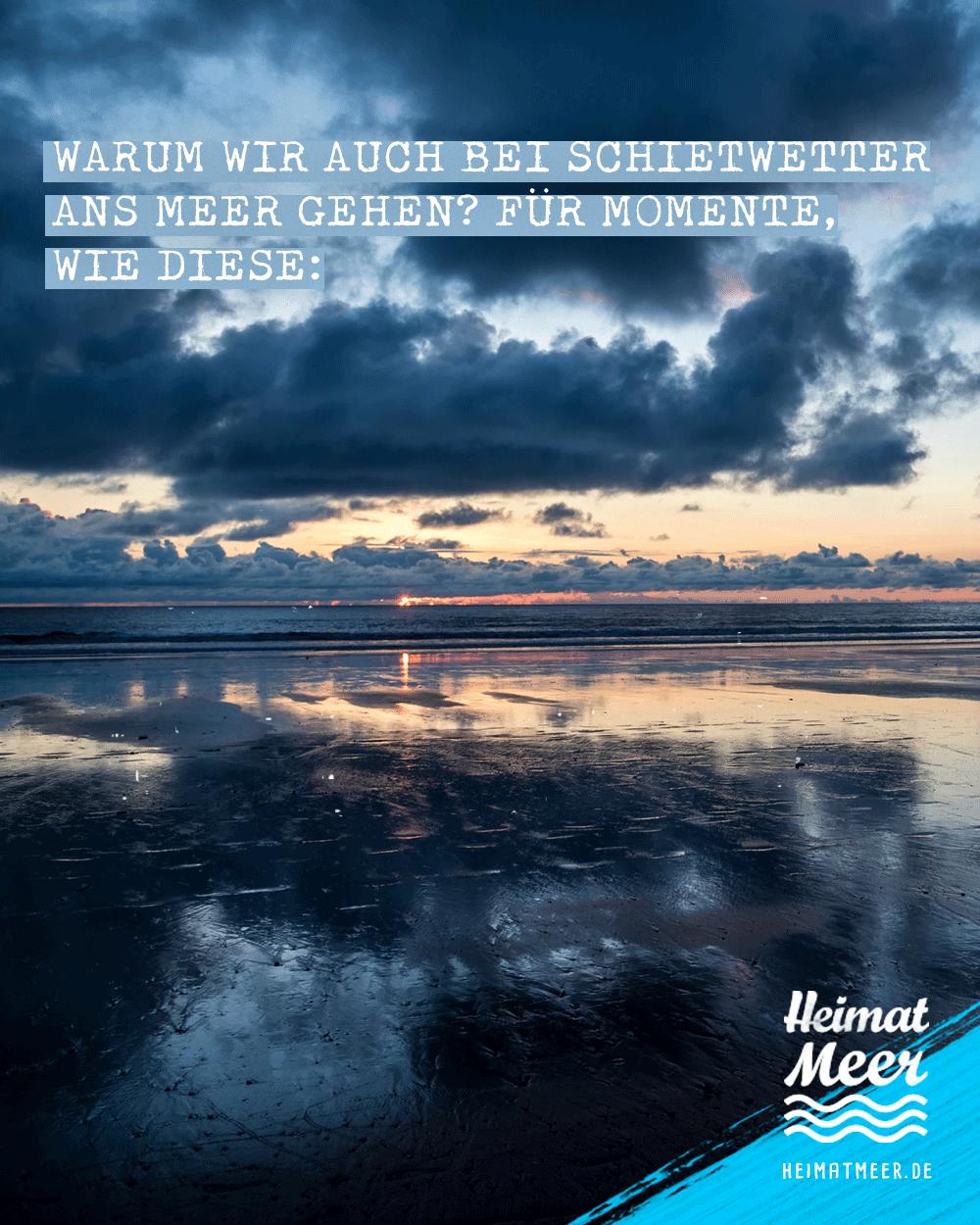 Schietwetter Sweater Hoodie Unisex Blau Strand Zitate Zitate Und Spruche Zitate