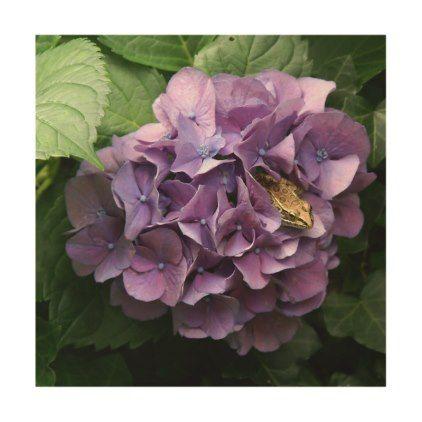 #photo - #Frog in a Hydrangea Wood Photo Print. Wood Print